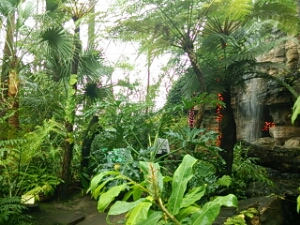 新潟県立植物園に行ってきた。植物園って意外と楽しいし穴場だね。