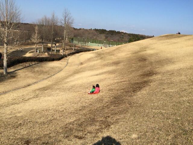 【印西】牧の原公園の築山でそり遊び