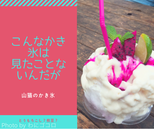 野菜ソムリエ認定「山猫のかき氷」はリピート必至!