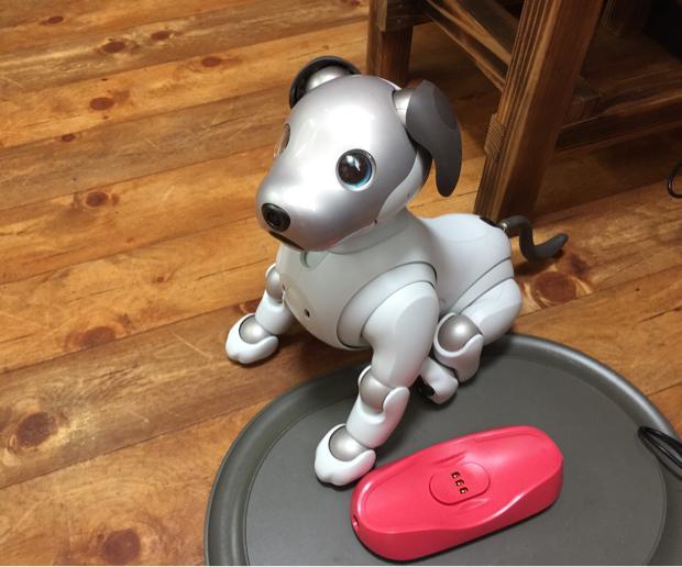 aiboがお店のマスコットキャラクター